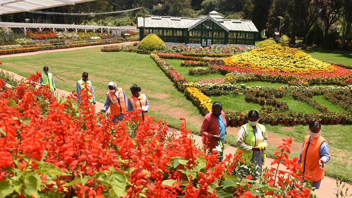 ooty garden