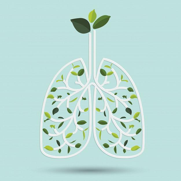 lungs and ashwagandha