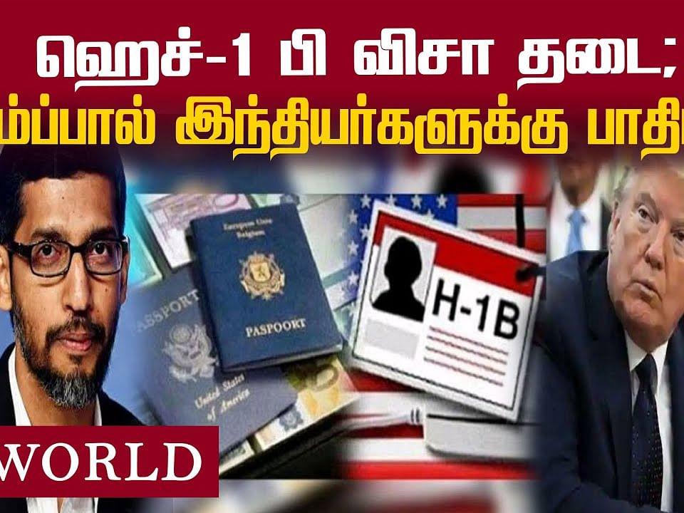 இது ஏமாற்றம்தான்... ட்ரம்ப்பின் முடிவுக்கு சுந்தர் பிச்சையின் ரியாக்ஷன்! | H1B Visa