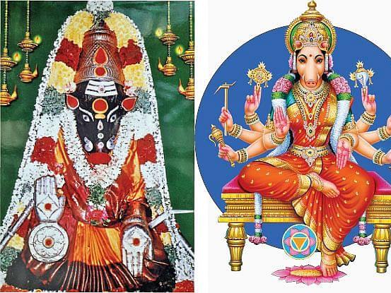 ஆஷாட நவராத்திரி பஞ்சமியில் வாராஹியை வழிபடுவதால் இத்தனை பயன்களா?