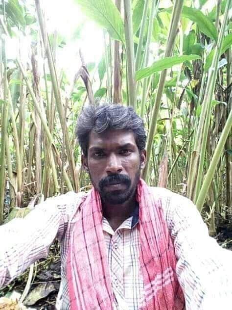 ராஜபாண்டியன்