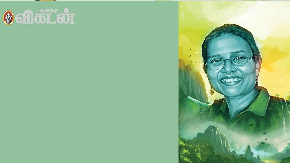 சோனாஜரியா மின்ஸ்.
