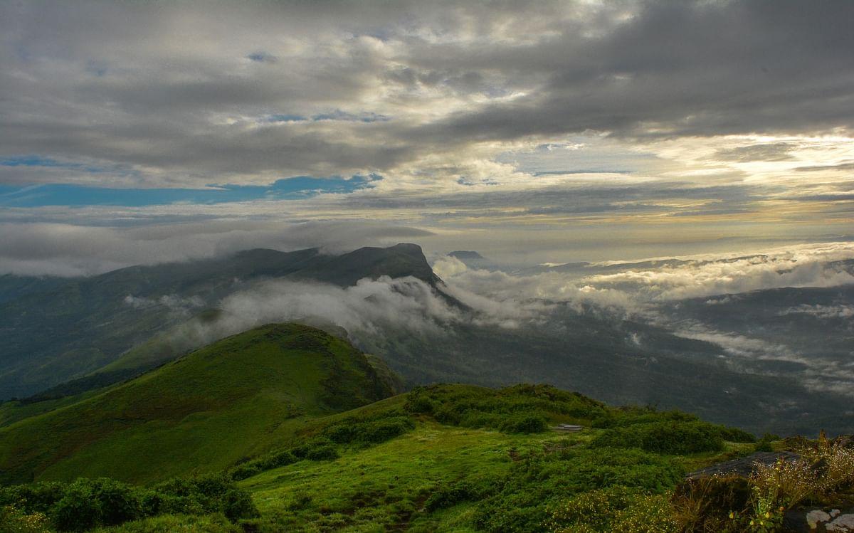 மேற்குத்தொடர்ச்சி மலை