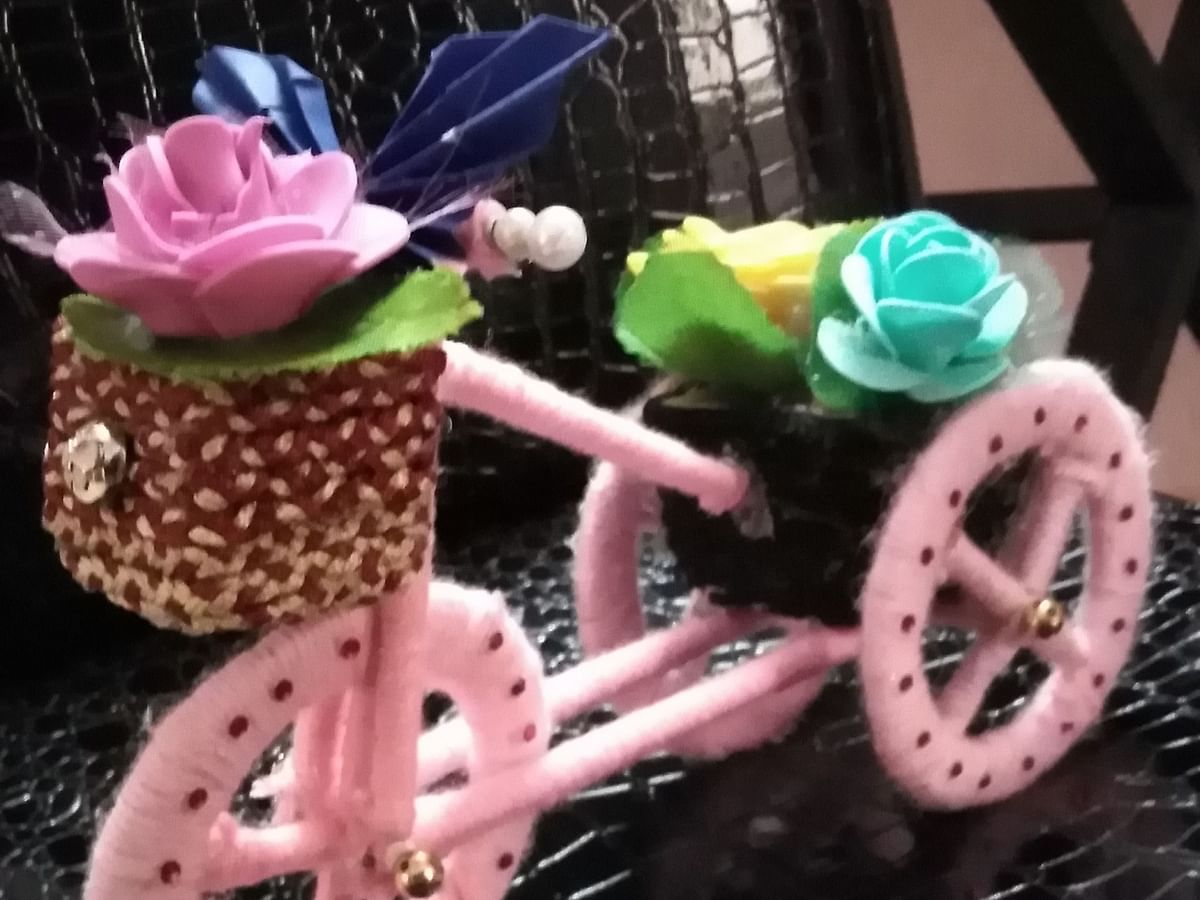 Woolen Cycle Craft