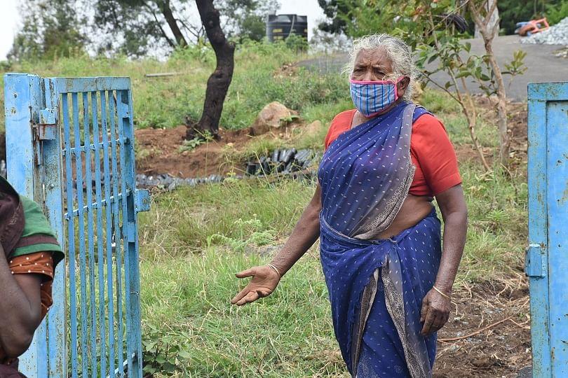 நீலகிரி: காப்பி நாற்று உற்பத்தி! - பொது முடக்கத்தில் அசத்தும் பழங்குடி இனப் பெண்கள்