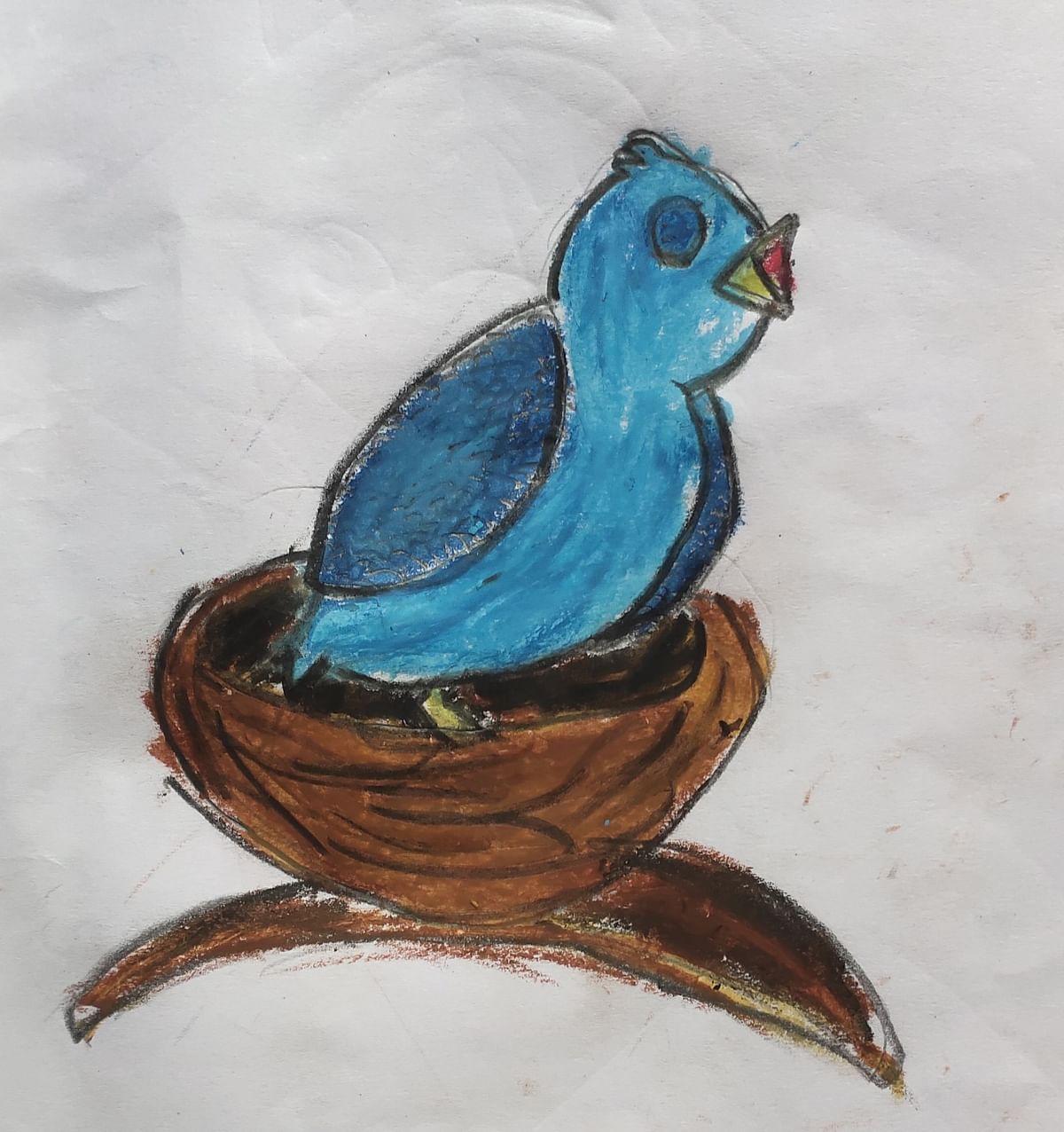 A little blue bird