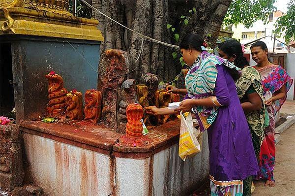 நாக சதுர்த்தி