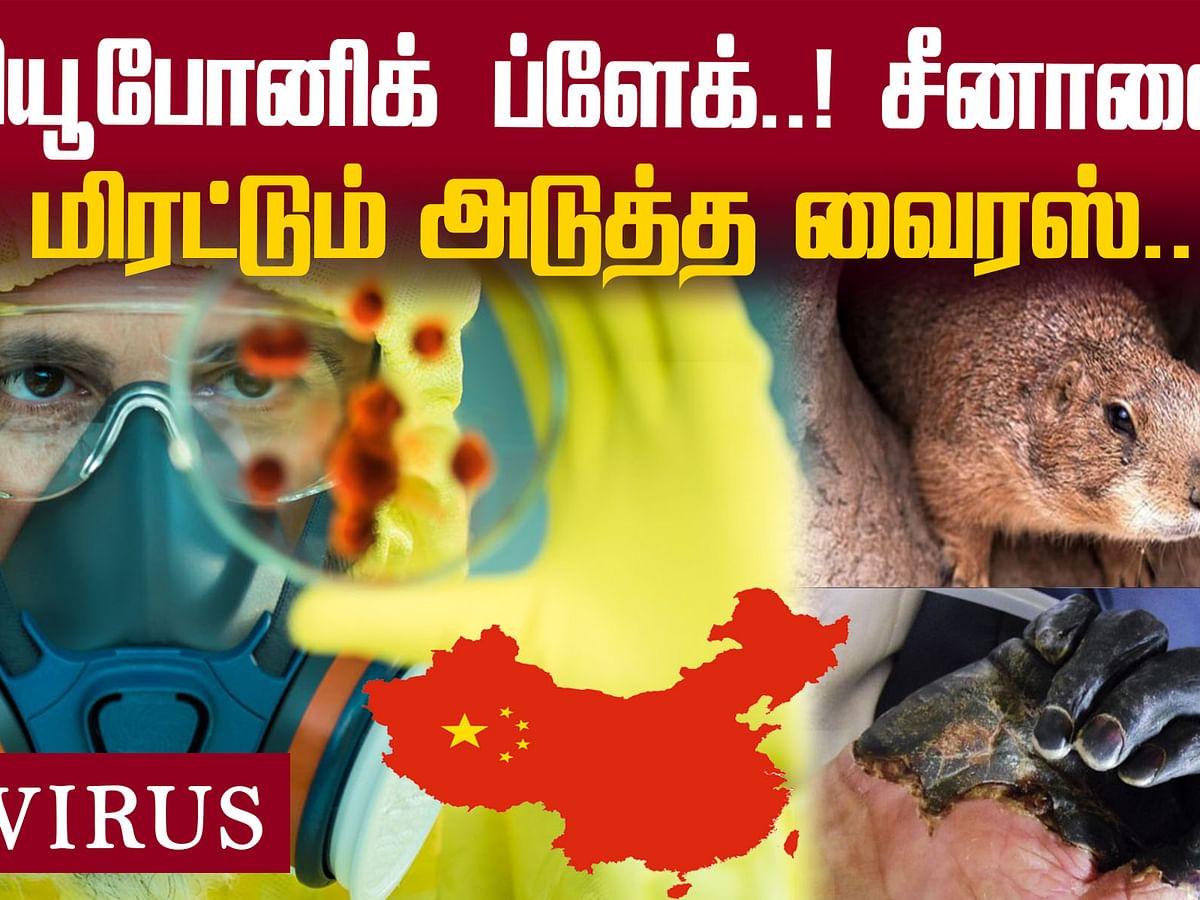 Bubonic Plague: 2020 முடியும்வரை சீனாவில் நோய் எச்சரிக்கை!