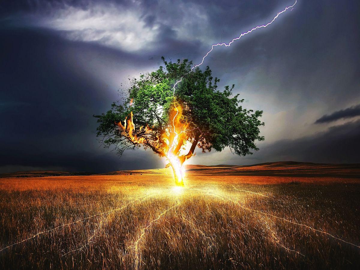 Lightning Strikes: பீகார், உத்தரப்பிரதேசத்தில் பலியான 107 உயிர்கள்... காலநிலை மாற்றம் காரணமா?