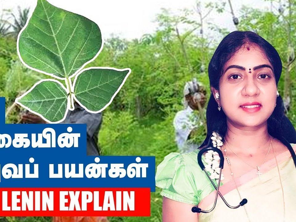 ஆண்மையை அதிகரிக்க இதை சாப்பிடலாம்! | Dr.Asha Lenin Explains | Homeopathy Doctor