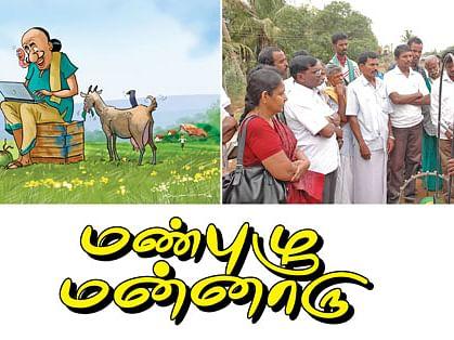 மண்புழு மன்னாரு : அஜ்வா பேரீச்சையும் அறிவு கொள்முதலும்!
