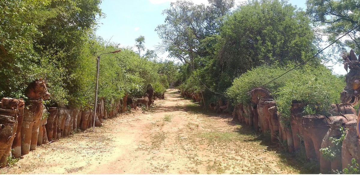 புதுக்கோட்டை மாவட்டம் புலிக்குத்தி அய்யனார் கோவில் காடு