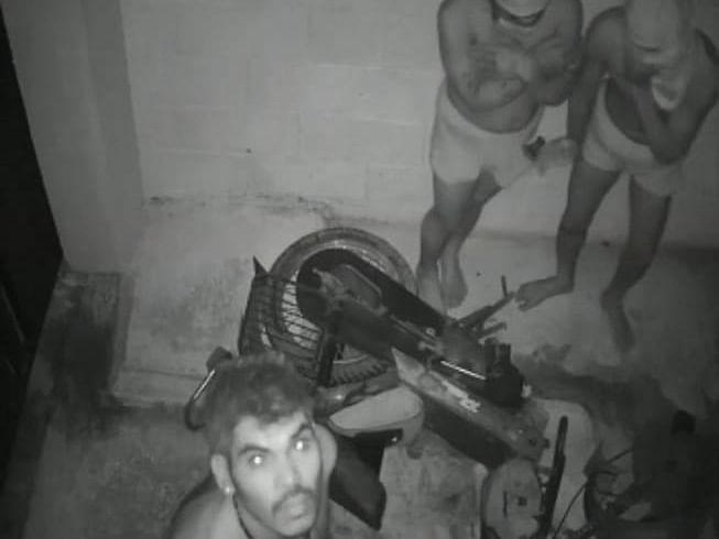 கோவை: `இரவில் அட்டகாசம் செய்யும் ட்ரவுசர் கொள்ளையர்கள்!' - அச்சத்தில் மக்கள்