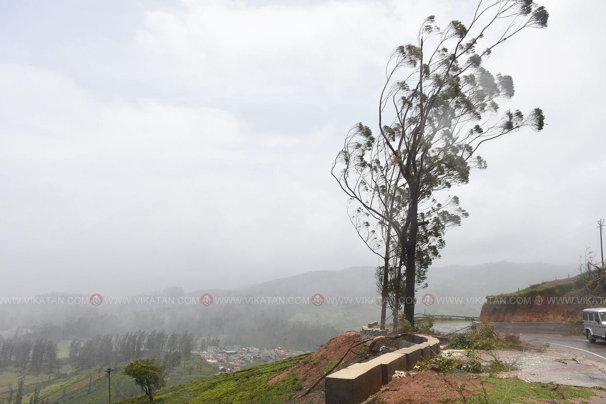 Heavy winds threaten to uproot roadside trees.