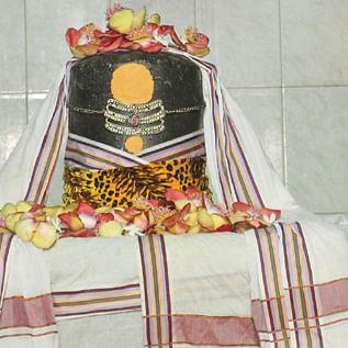 ஶ்ரீகுணம் தந்த நாதர்