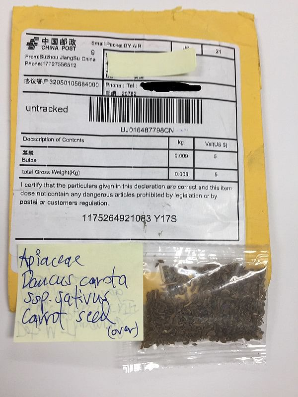 Unsolicited seeds, labeled as things like jewelry and beads, have arrived in mailboxes around the nation, prompting investigation by the U.S Department of Agriculture (USDA).