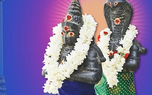 வாழ்வில் மாற்றங்களை கொண்டு வரும் ராகு, கேது பெயர்ச்சி.. ! - வாசகர் பகிர்வு #MyVikatan