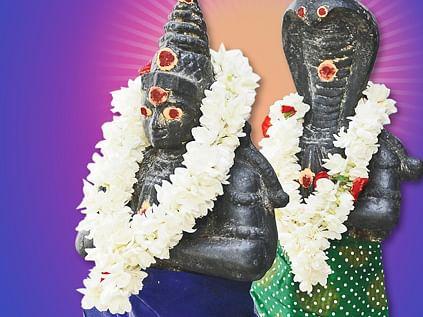 நீசமாகும் ராகு... உச்சமடையும் கேது... எந்த ராசிக்கு என்ன பலன்? என்ன பரிகாரம்? #VikatanPhotoCards