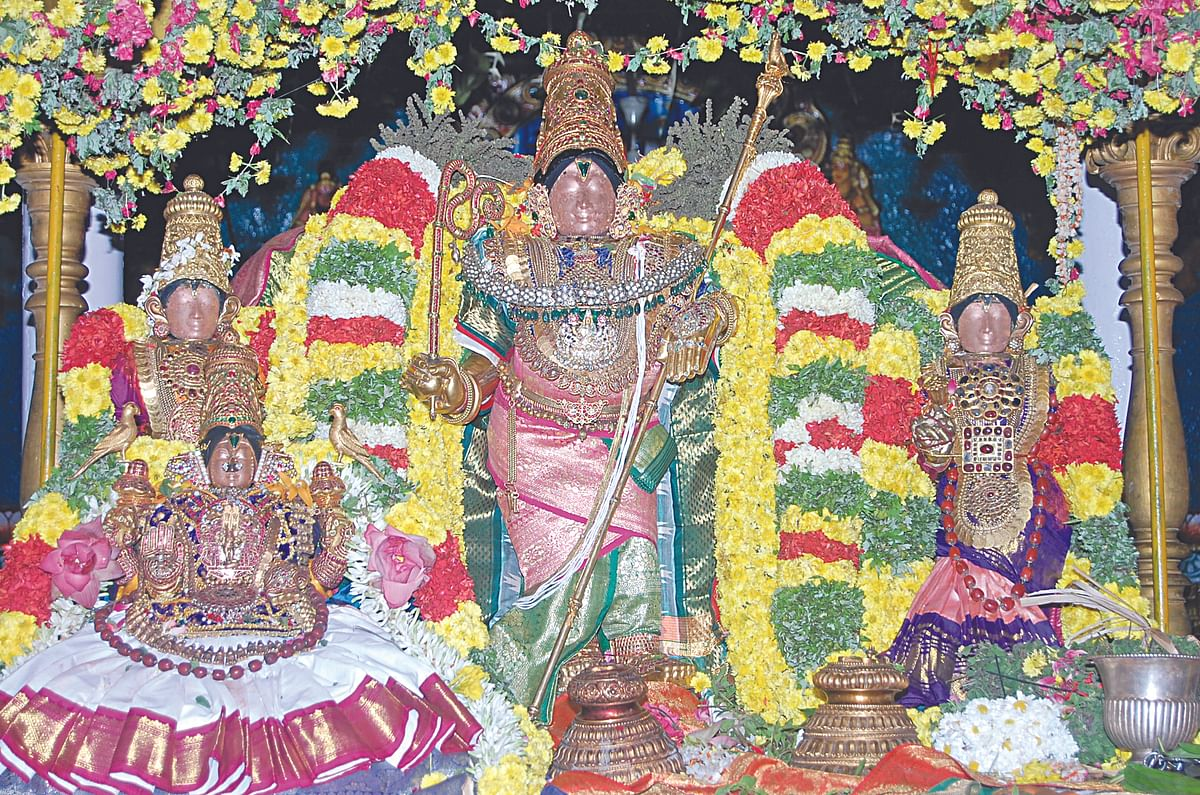 மன்னார்குடி ஸ்ரீவித்யா ராஜகோபாலன்