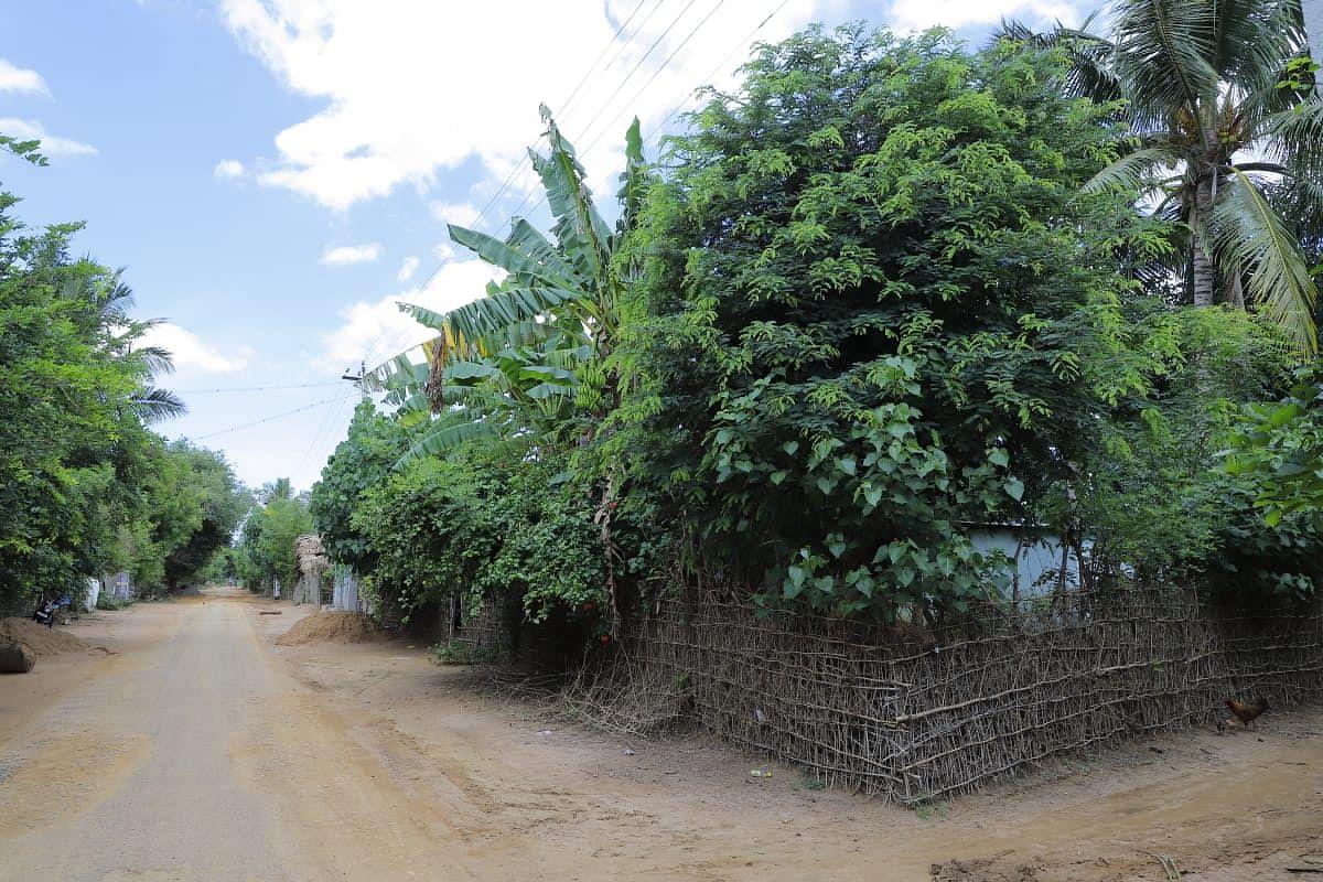 தலையாமங்கலம் ஊராட்சி