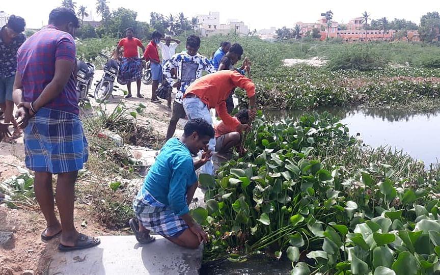 கரூர்: `நம்ம ஆத்தை நாமதானே சுத்தப்படுத்தணும்!' - அமராவதி ஆற்றில் களமிறங்கிய இளைஞர்கள்