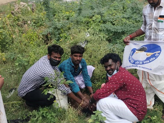 கரூர்: `கிரீன் குளித்தலை சேலஞ்ச்; 60 கிராமங்களில் மரக்கன்றுகள்!' அசத்தும் விஜய் ரசிகர்கள்