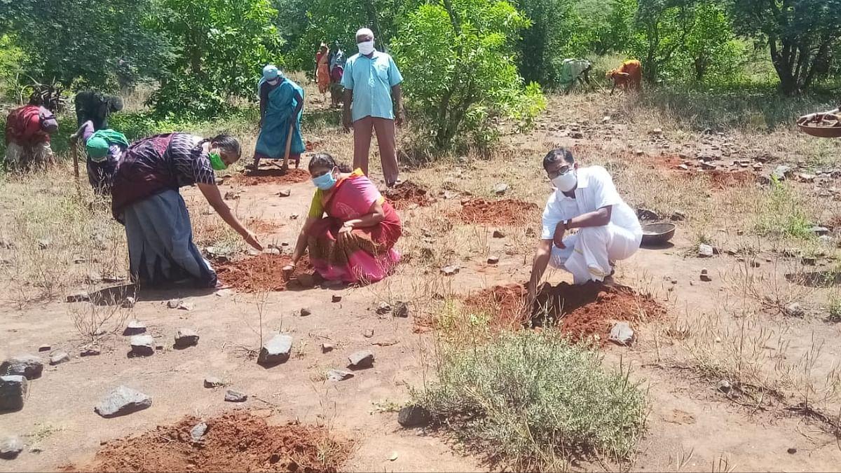 பனைவிதை நடும் ராஜ்குமார், கங்கை அபிராமி