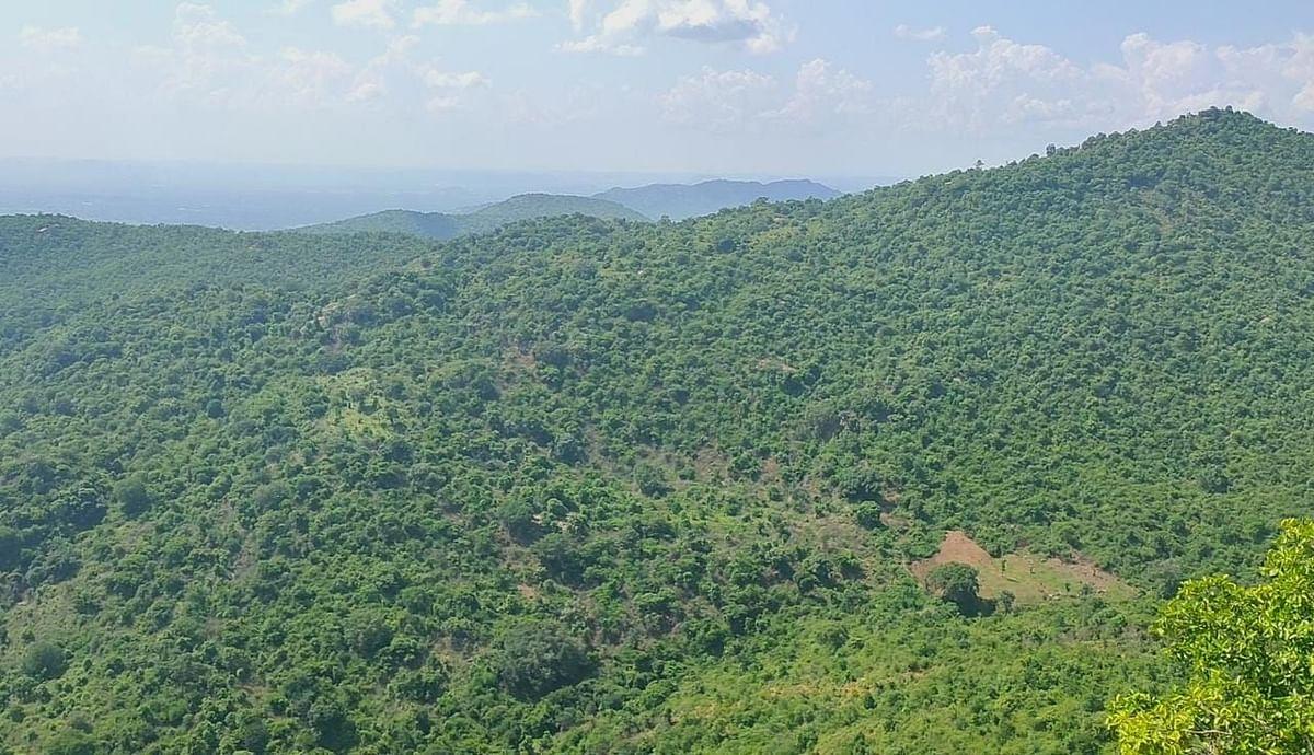 அல்லேரி மலை