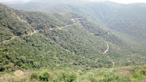 Pachaimalai