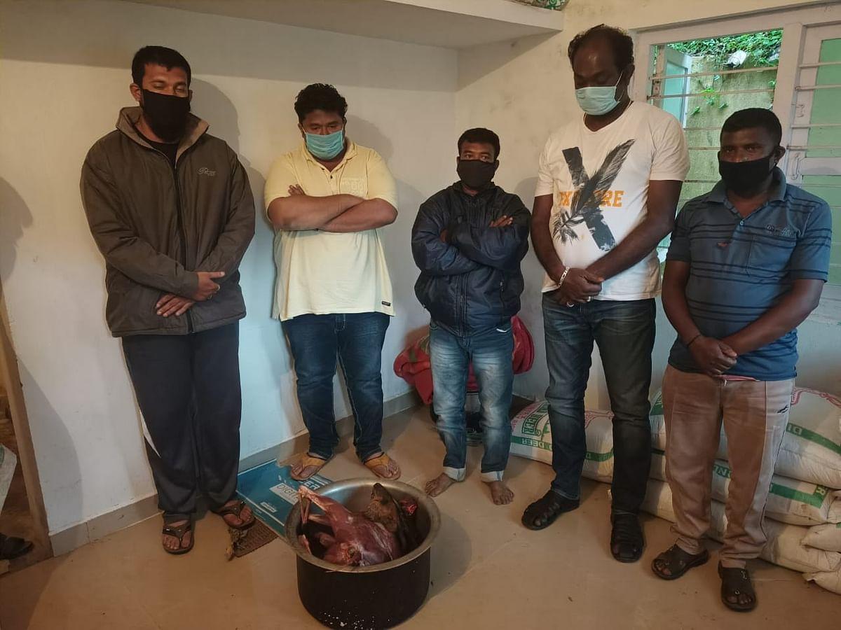 நீலகிரி: டூரிஸ்ட்டுகளுக்கு `குரைக்கும் மான்' விருந்து! - சிக்கிய காட்டேஜ் உரிமையாளர்