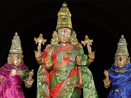 ஸ்ரீபுண்டரீக வரதராஜப் பெருமாள்