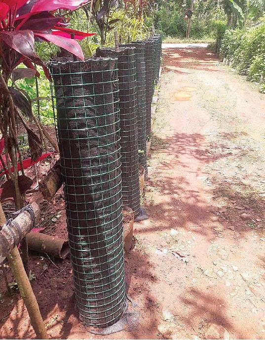 வீட்டுத்தோட்டத்தில் நிற்கும் கம்பி வலைகள் அமைப்பு