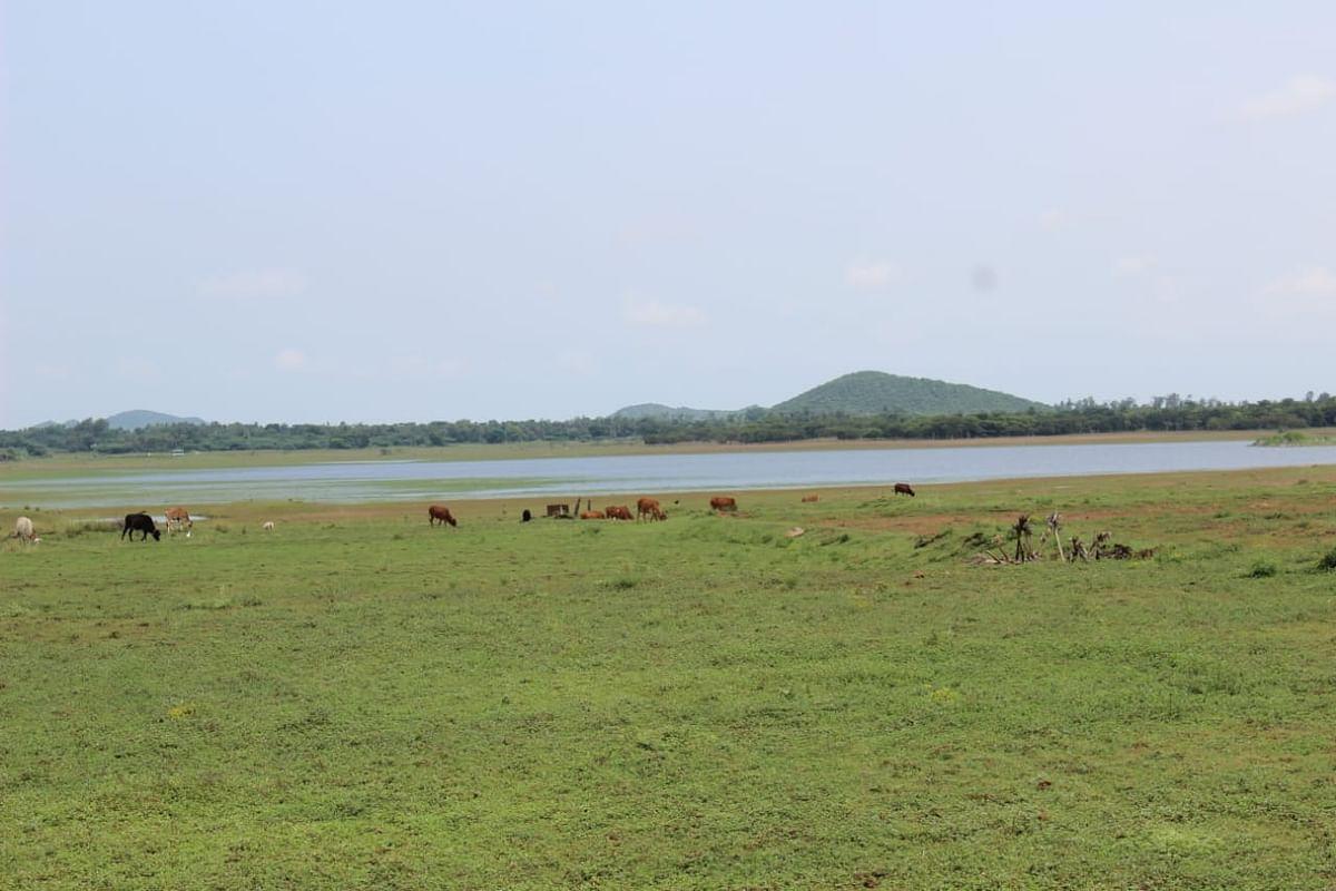 குவாரி திட்டத்தால் பாதிக்கப்போகும் எடமிச்சி ஏரி