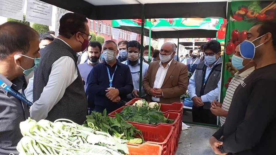 Organic Market