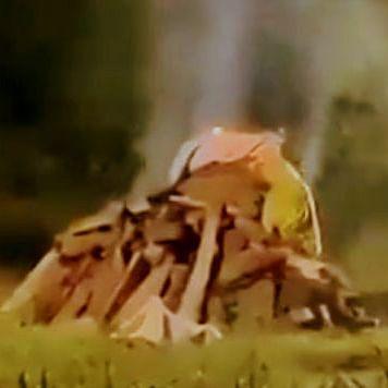 எரிக்கப்பட்ட பெண்ணின் உடல் - ஹத்ராஸ்