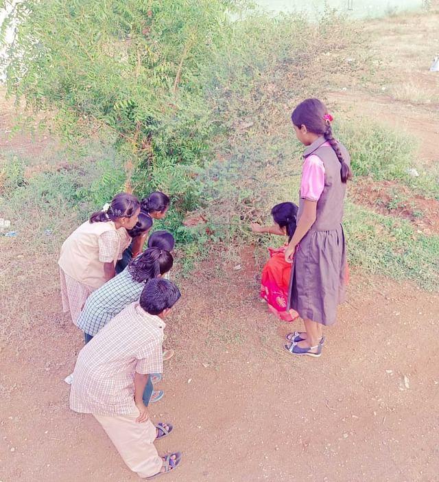 உயிர்வேலி பற்றி மாணவர்களிடம் விளக்கும் திலகவதி