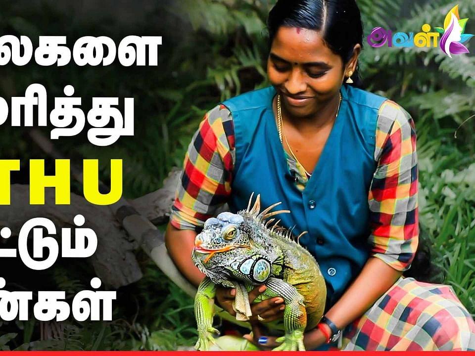 Amazing: ஆபத்தான விலங்குகளை அசால்ட்டாக வளர்க்கும் பெண்கள்!