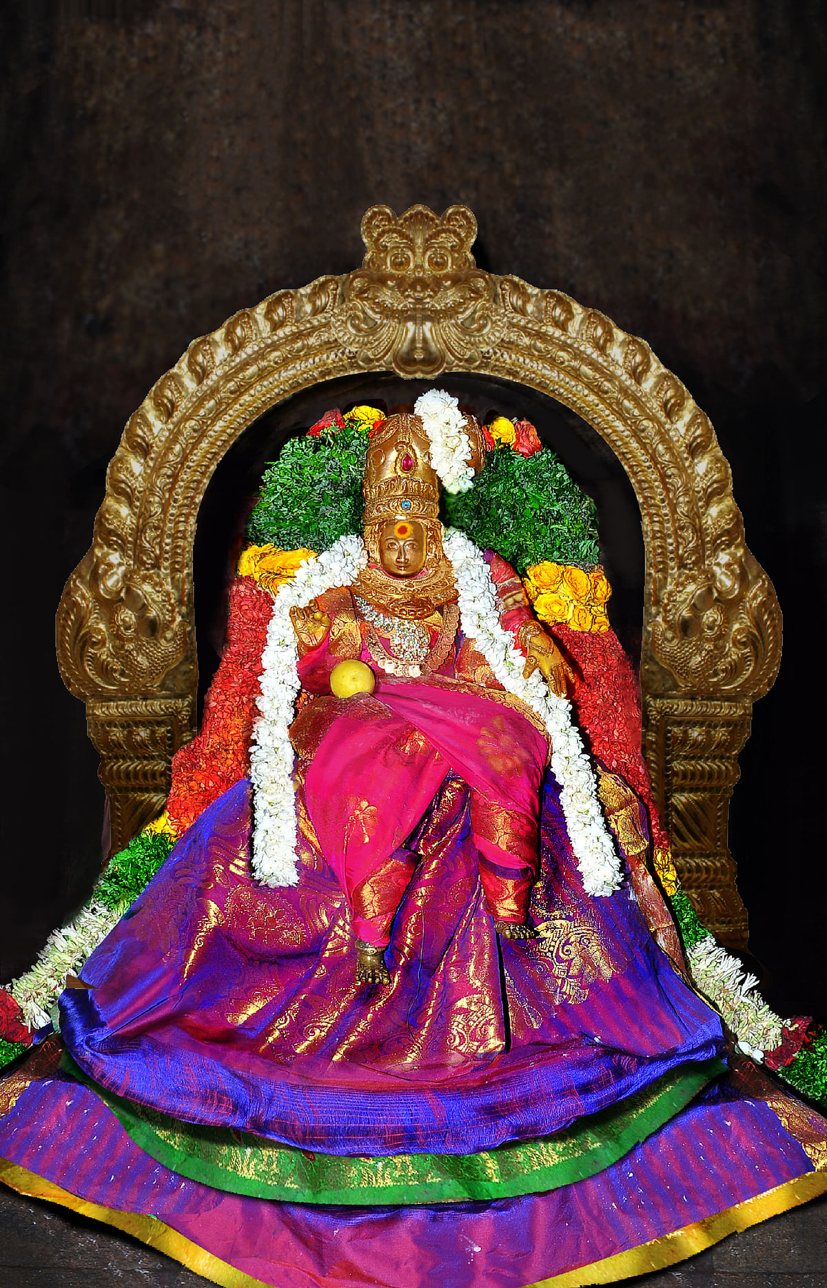 சாகம்பரி