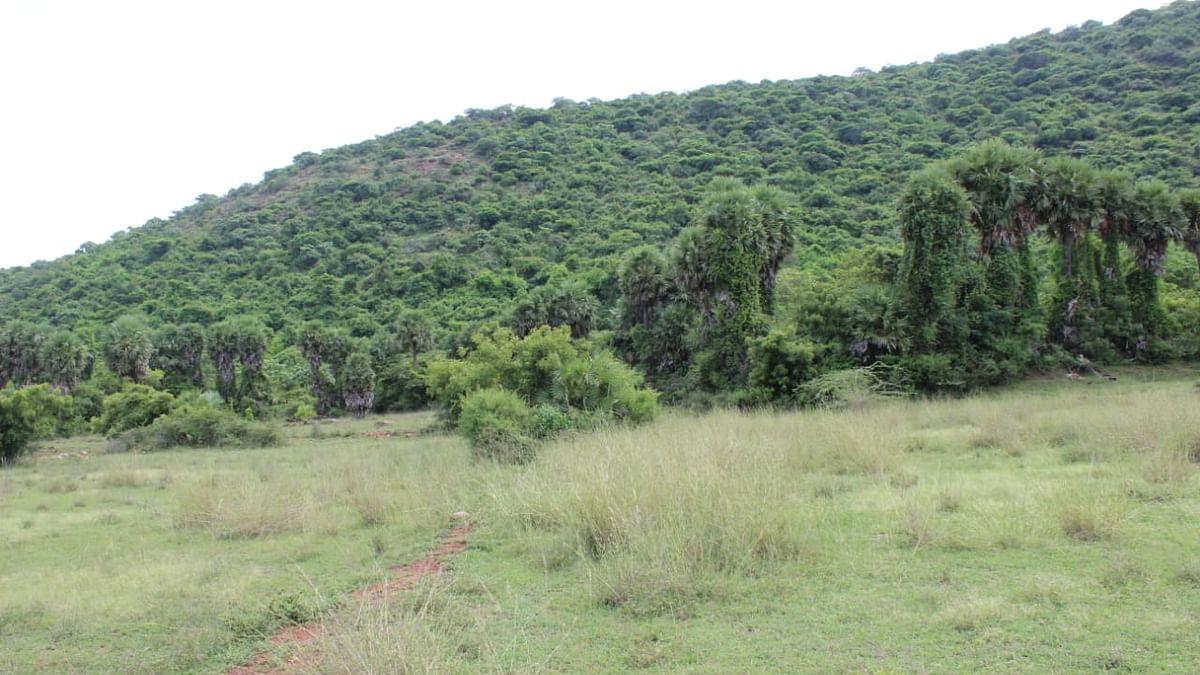 குவாரி தொடங்கப்போகும் பகுதி