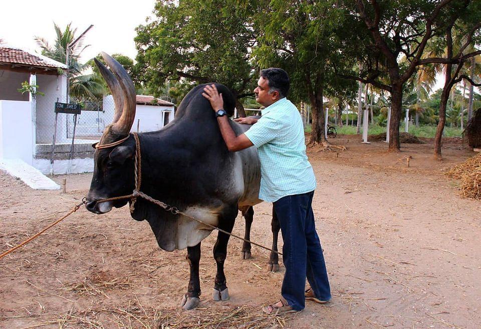 கார்த்திகேய சிவசேனாபதி