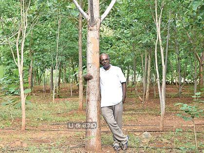 50 ஏக்கரில் குறுங்காடு... மரம் வெட்டி இன்ஜினீயரின் 'பசுமை' பாசம்!