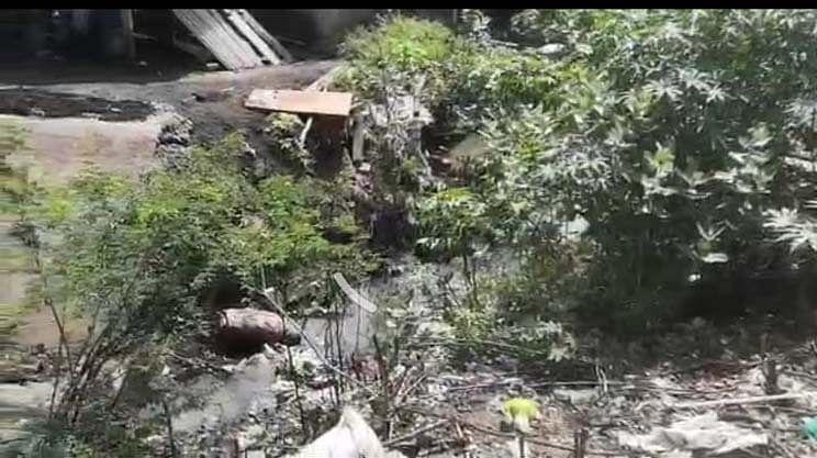 கிளை வாய்க்காலில் வரும் கழிவுநீர்