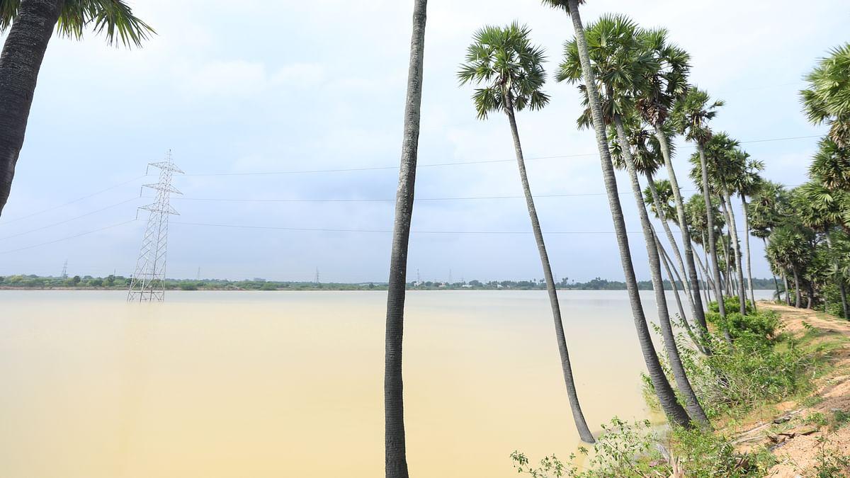 Nariyampakkam Lake
