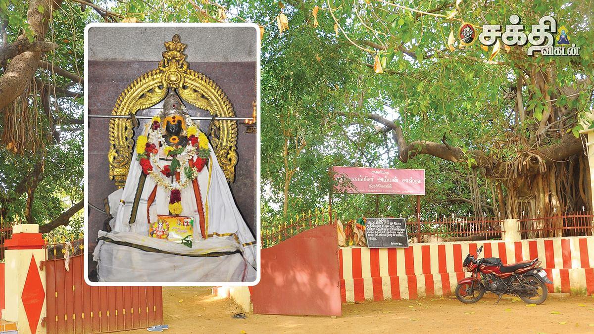 ஸ்ரீபசுங்கிளி சாஸ்தா