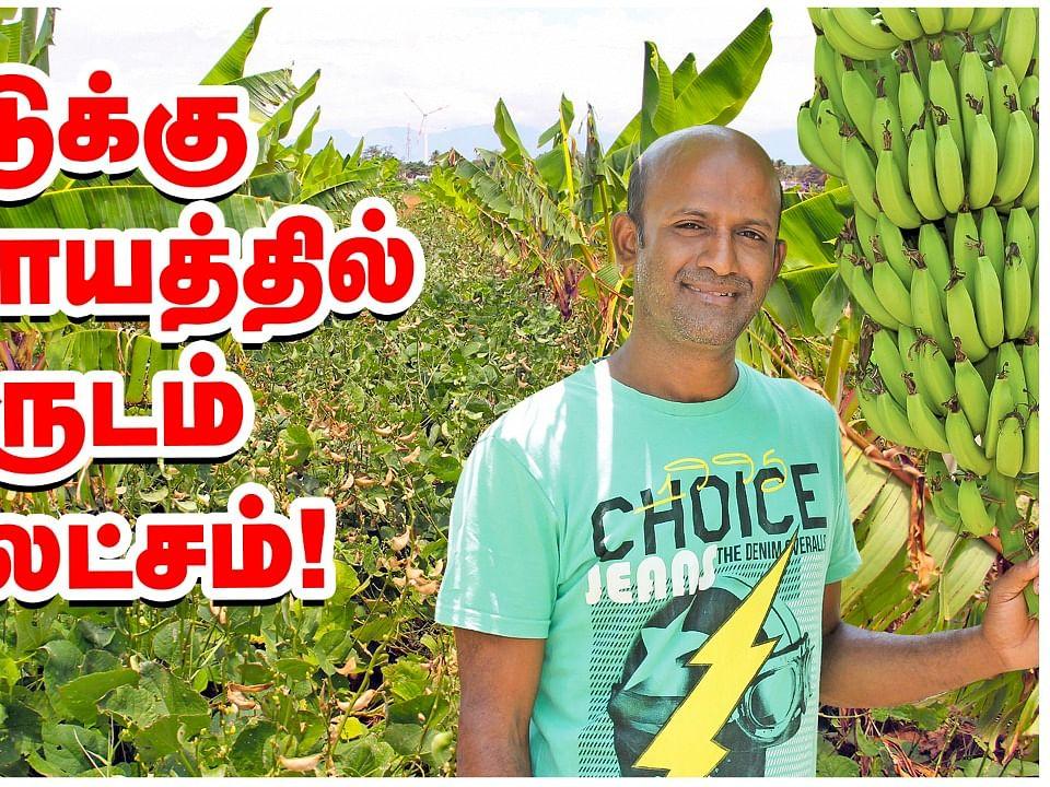 Zero Budget multilayer farming-ல் வருடம் ₹20 லட்சம் வருமானம்!