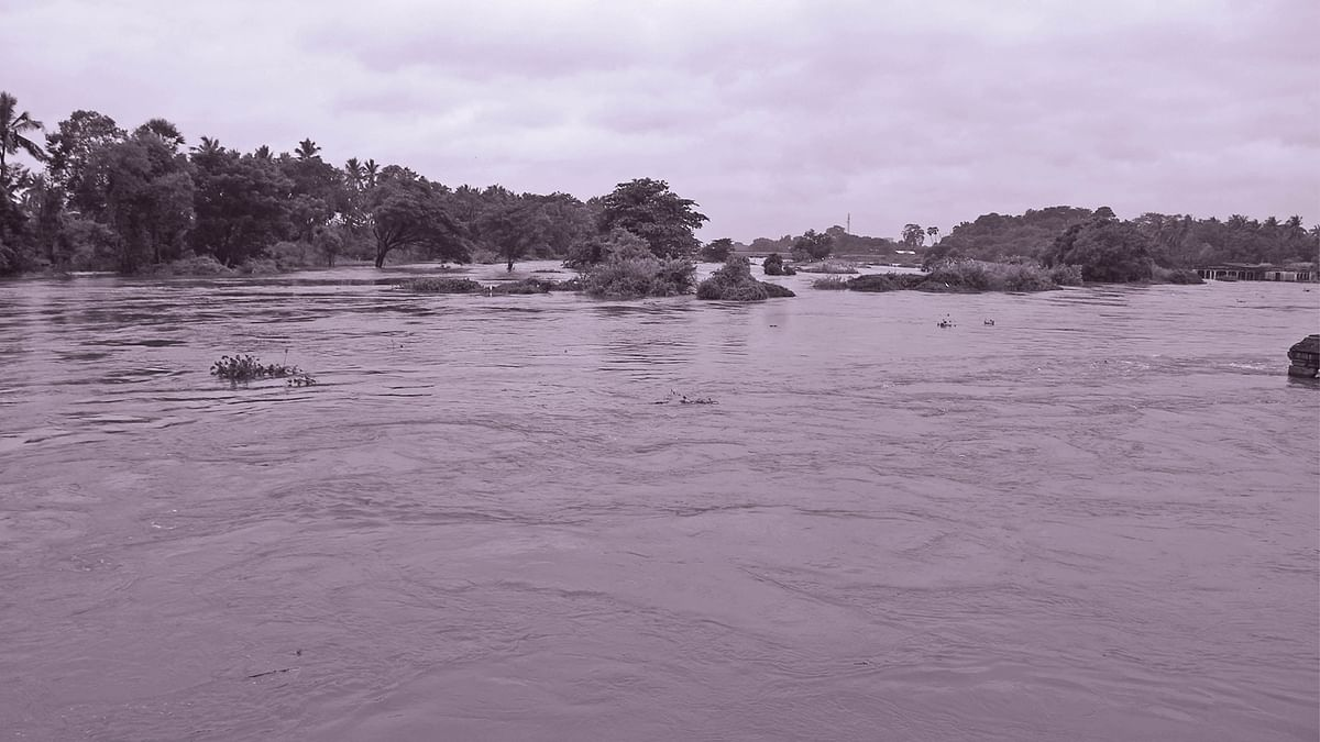 தாமிரபரணி