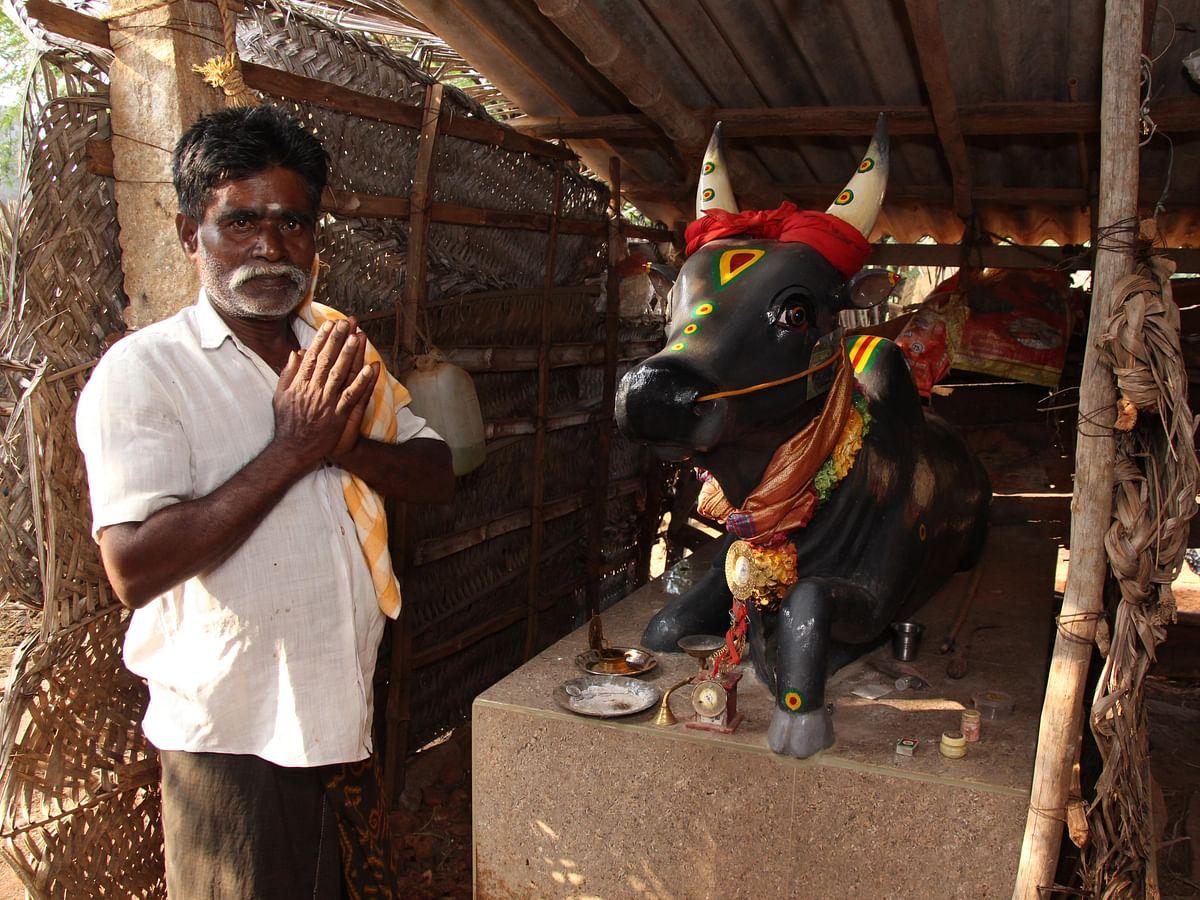 காளை சிலையுடன் சந்திரசேகர்
