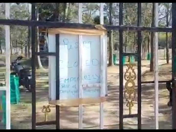 நீலகிரி: யானைக்கு தீ வைத்த விவகாரம்... மசினகுடியில் 55 ரிசார்ட்டுகளுக்கு `சீல்'