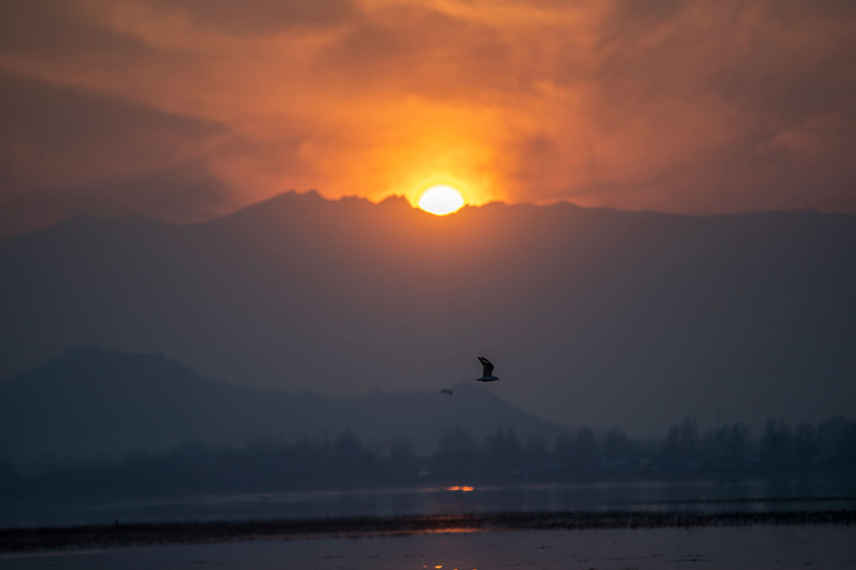 Birds fly over the Dal Lake as the sun sets in Srinagar