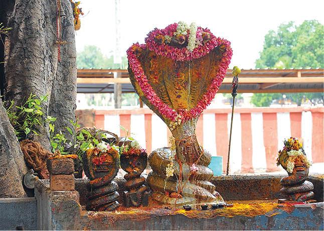 மாரியம்மன் கோயில் நாகர் சந்நிதி